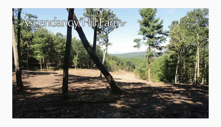 146 MILL HILL ROAD PINE PLAINS, NY 12567 - Image 1