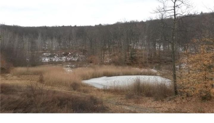 5-11 Ives Court (49 Acres) - Image 1