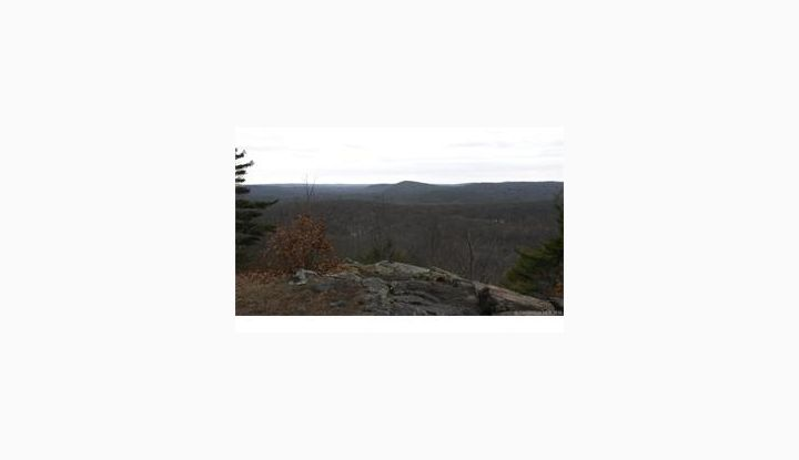 1A,1B,5-11 Ives Court (94 Acres) Ridgefield, CT 06877 - Image 1
