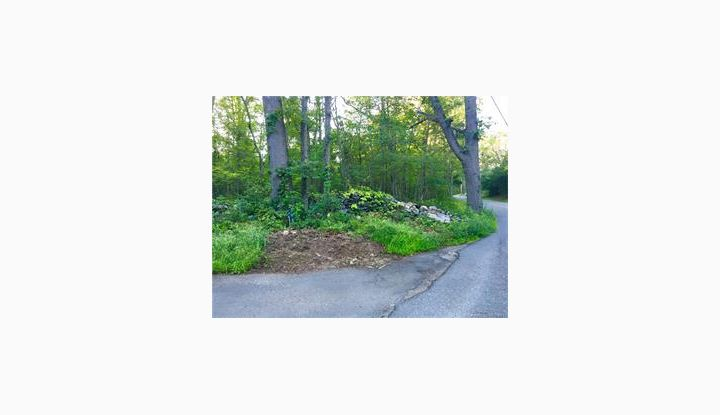 Lot 217 Turkey Hill Rd Chester, CT 06412 - Image 1